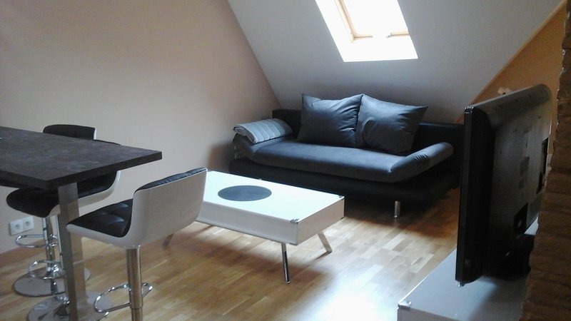 Nice apartment in Auxonne & Wifi, holiday rental in Dole
