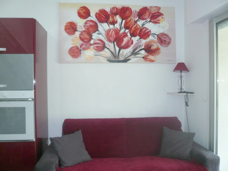 Nice apt with balcony, vacation rental in Saint-Georges-de-Didonne