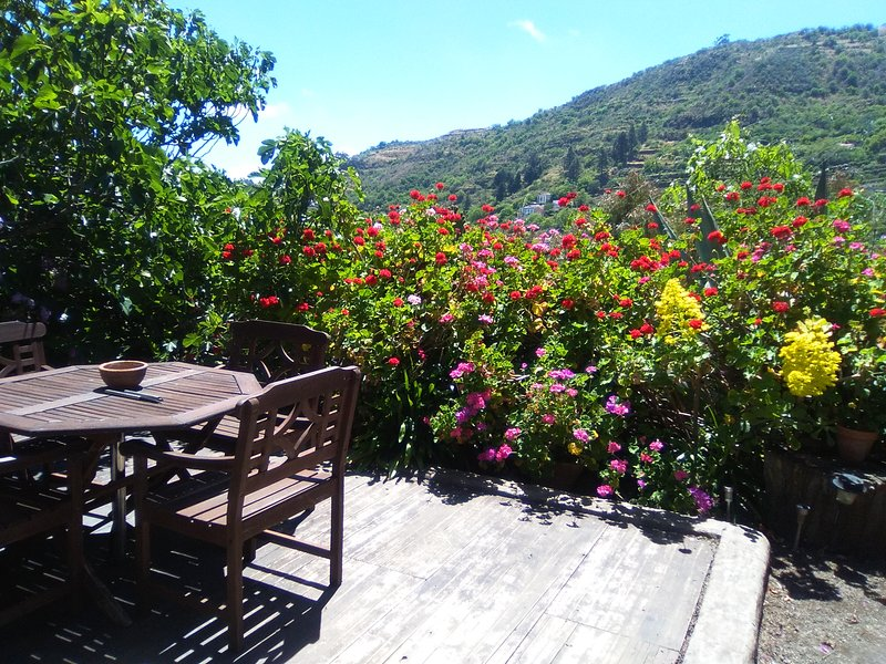 Nice house with mountain view, holiday rental in Cruz de Tejeda