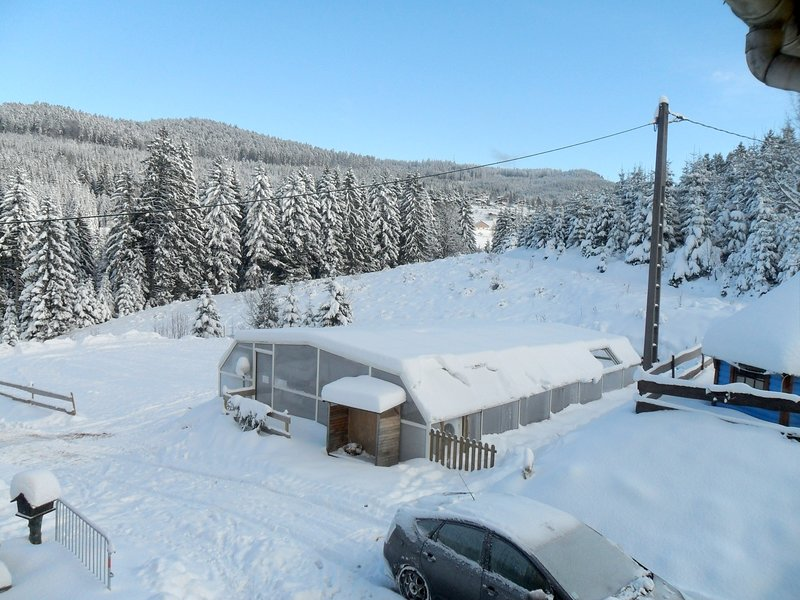 Amazing apt with shared pool & Wifi, holiday rental in Le Valtin