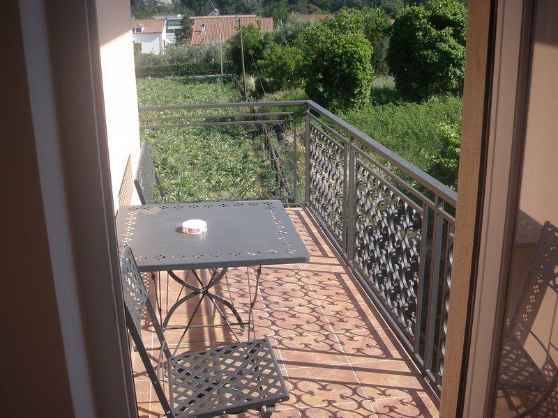 Amazing apartment with terrace, vacation rental in Cisano sul Neva
