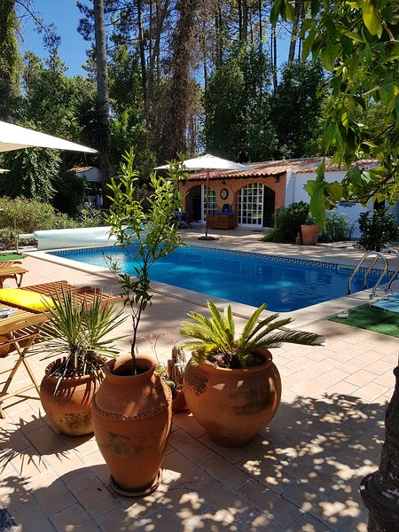 Amazing villa with swimming-pool, holiday rental in Sesimbra