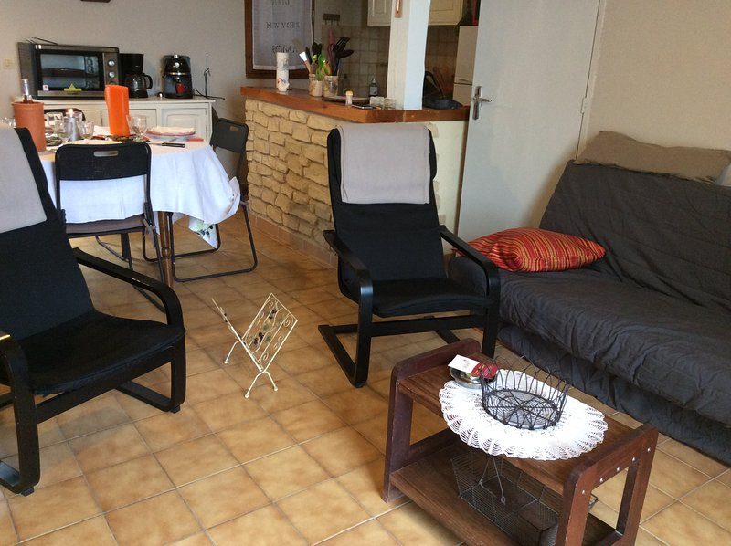 Beautiful house with mountain view, vacation rental in Oppedette
