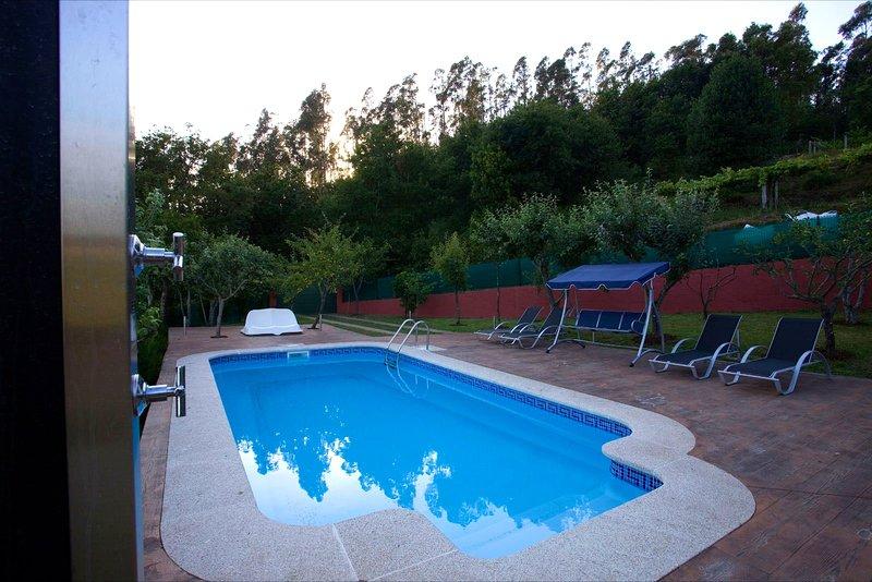 Amazing house with swimming-pool, alquiler vacacional en A Estrada