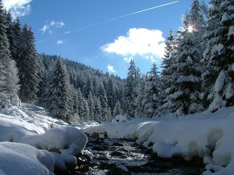 Sports invernali in ValPalot 15 KM-Montecampione 20KM