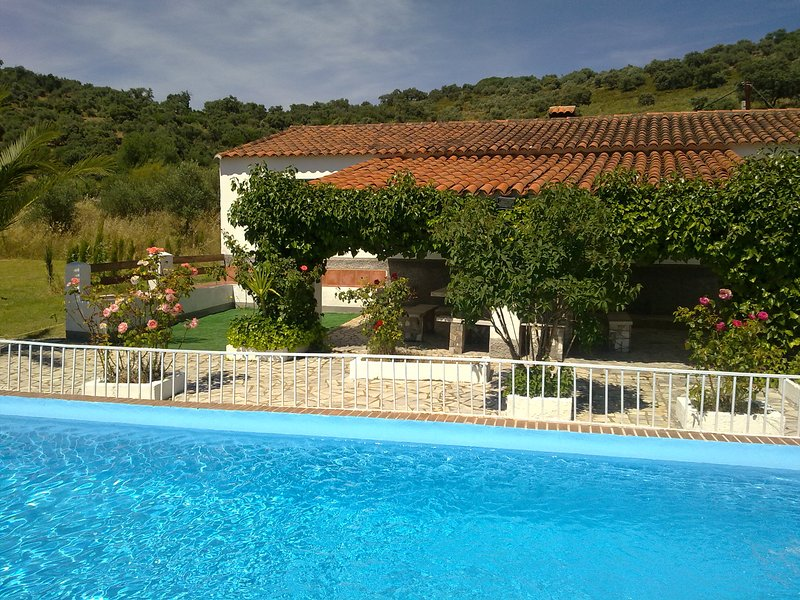 Amazing house with swimming-pool, holiday rental in Palos de la Frontera