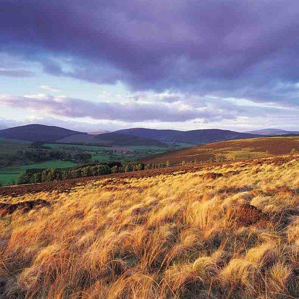 Views across Perthshire