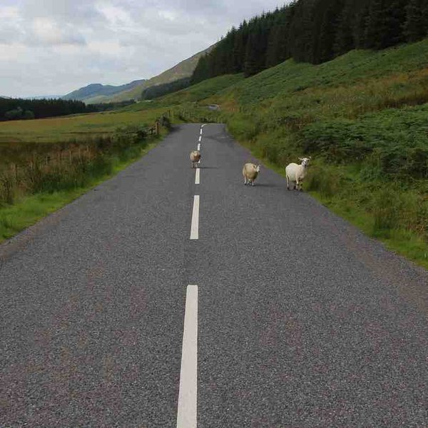 Taking the road out from Moffat to Selkirk