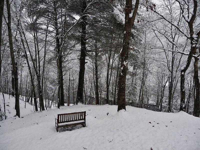 Les hivers courts sont sereins et pourtant calmes, mais peuvent faire de superbes combats de boules de neige ou construire des bonhommes de neige!