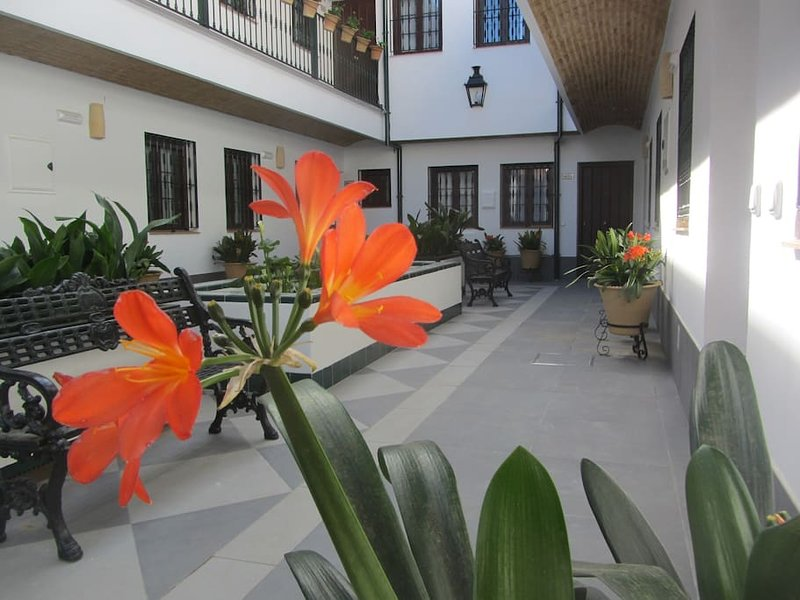 TrianaApartament. A03. Corral Alfareria 49. In Triana, close the bridge, holiday rental in Olivares