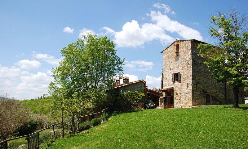 Volpaia Villa Sleeps 12 with Pool - 5696067, location de vacances à Volpaia