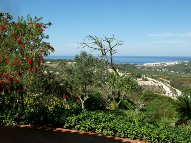 Quinta do Vale das Donzelas, holiday rental in Colares