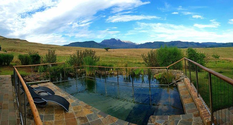 Il vostro laghetto privato per nuotare o semplicemente rilassarsi su una sedia a sdraio.