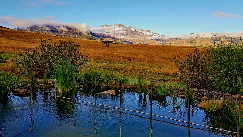 Una vista di primo mattino dal giardino posteriore privato di fronte alle montagne.