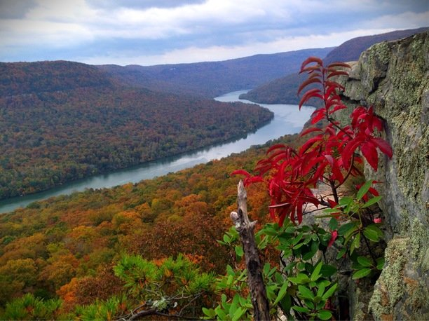 Tennessee River Gorge Island Cabinsr 178 Weekdays Stay 3