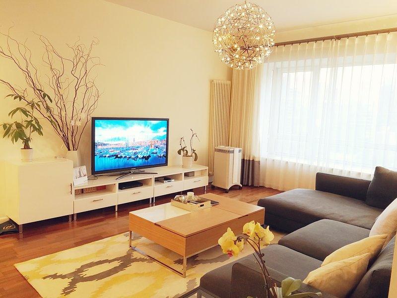 55' Samsung TV