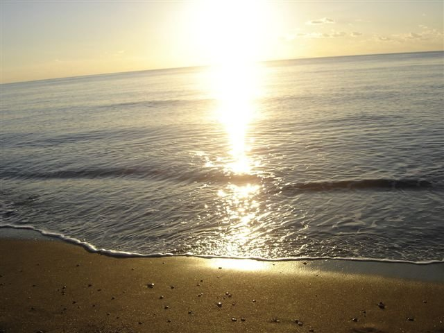 Marina di Bibbona the beach