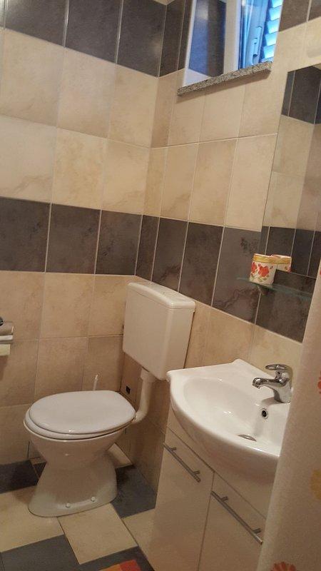 A5 (2): baño con inodoro.