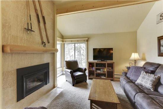SkiWatch 103, holiday rental in Breckenridge