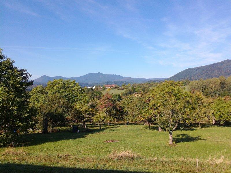 Meublé de tourisme Le Panoramique, holiday rental in Balbronn