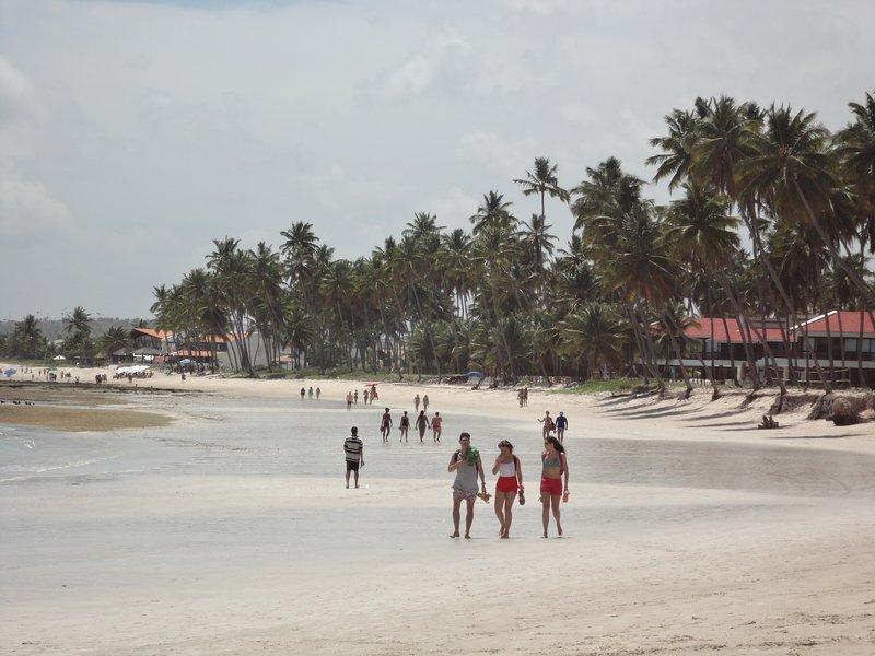 Casa Praia dos Carneiros - Tamandaré - Pernambuco, aluguéis de temporada em Tamandaré