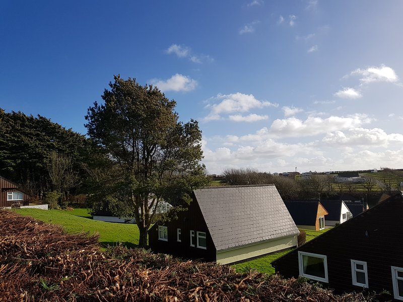Lodge with private patio and garden. WiFi will be installed in Lodge from 2021, alquiler vacacional en Kilkhampton
