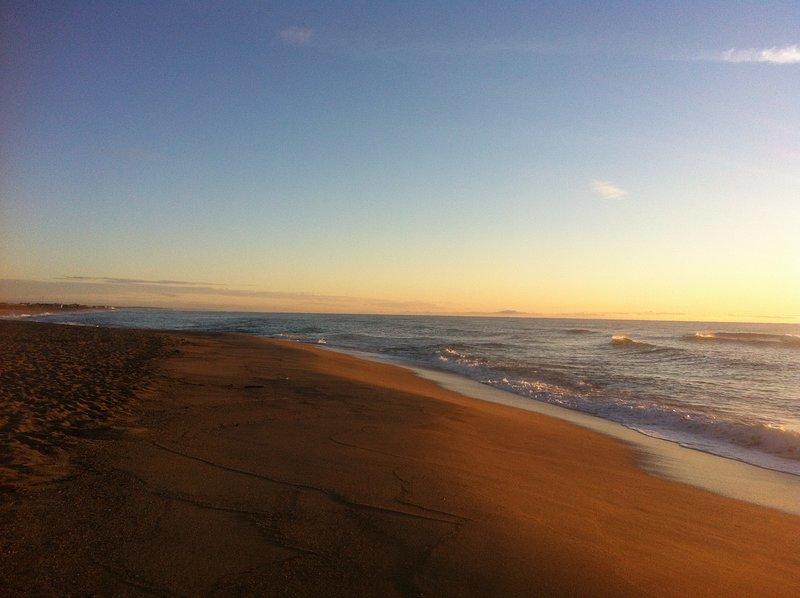 Wilde beach view