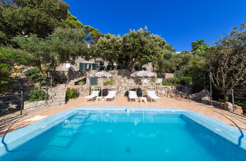 LUXURY VILLA WITH PRIVATE SWIMMING POOL, holiday rental in Forio