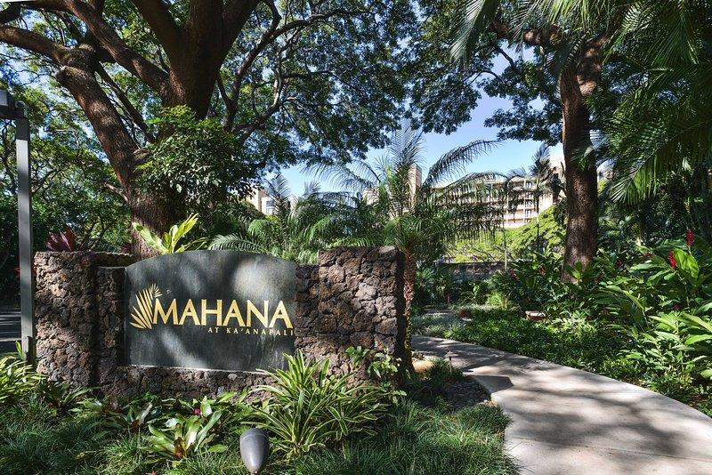 Este hermoso condominio es la base perfecta de Maui!