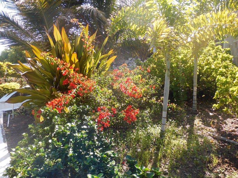 Flores de Granada