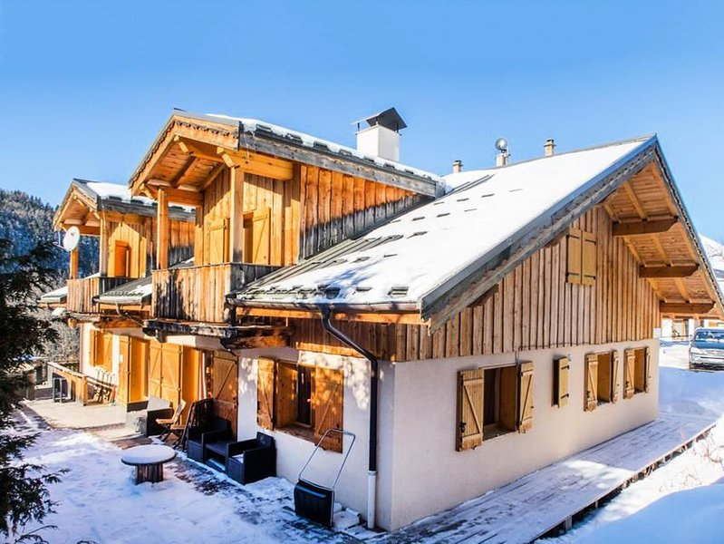 White Stripe Mountain Lodge Chalet Porte du Paradis, holiday rental in Peisey