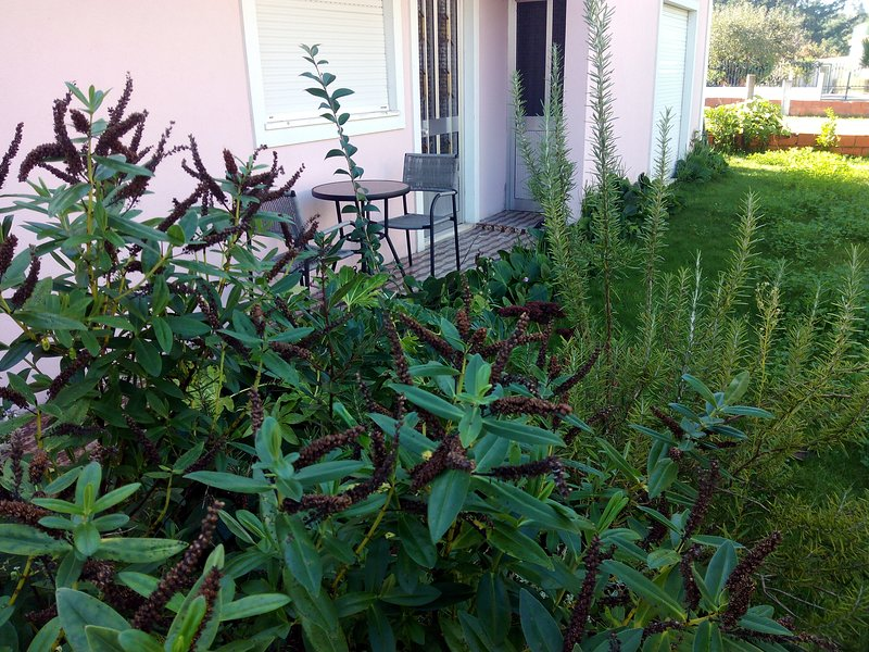Nice house with garden & Wifi, holiday rental in Oliveira do Bairro