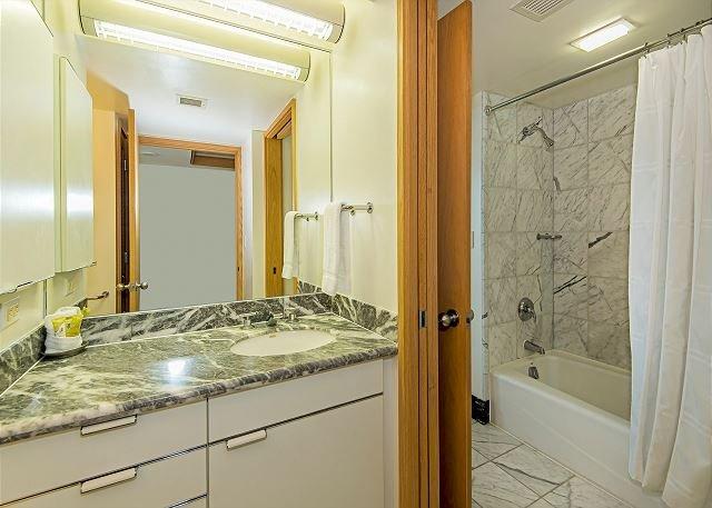 Salle de bains Vanity avec douche et baignoire