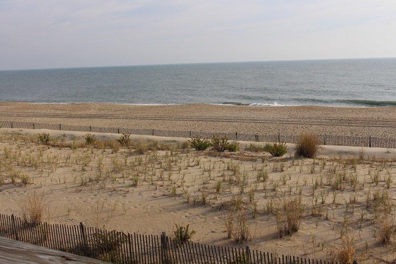 Ocean Harbor 6a, location de vacances à Dewey Beach