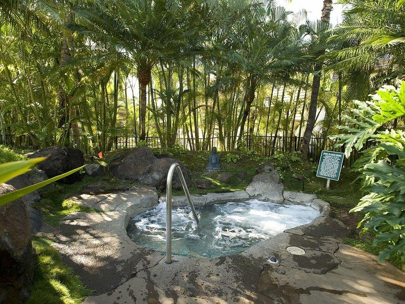 Bosque, selva, vegetación, árboles, piscina