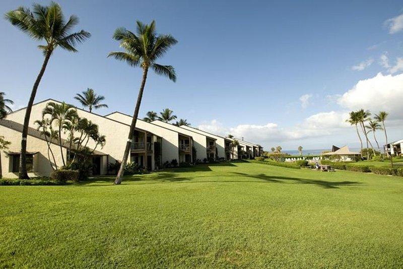 Palme, Baum, Gebäude, Hacienda, auf dem Land