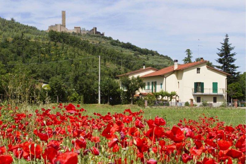 CASA SAN MARTINO, holiday rental in San Pietro a Cegliolo