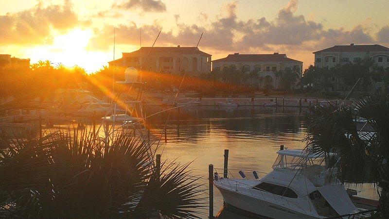 Belle vue depuis notre terrasse le matin