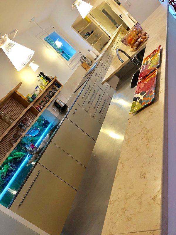 Schöne moderne Küche mit vieler Arbeitsfläche und im amerikanischen Stil Kühlschrank