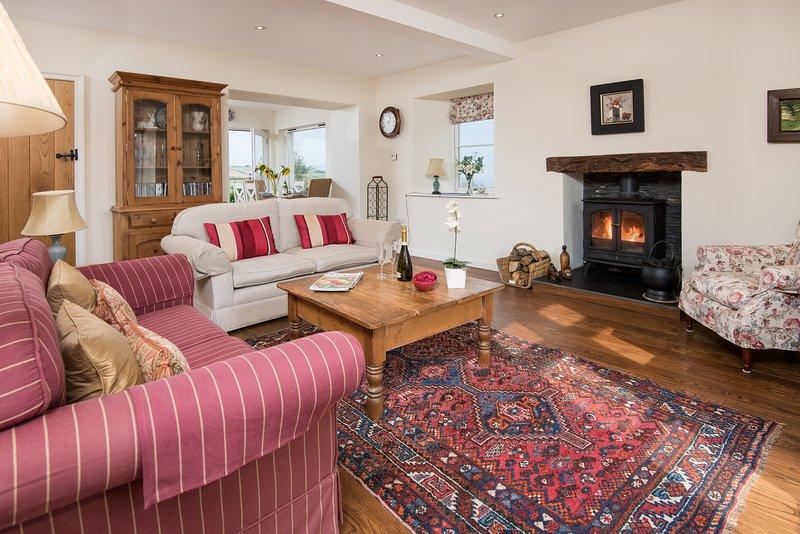 lounge area with log stove