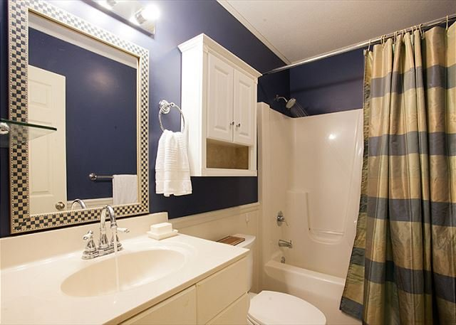 Basement bathroom w/ bathtub and shower
