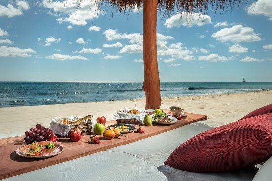 Você pode desfrutar de muitas actividades perto da casa. Aqui apreciar a comida na praia