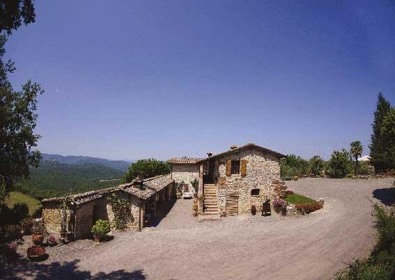 Pulcianese immerso nel verde delle colline toscane ma a due passi da Siena, Ferienwohnung in Bagnaia