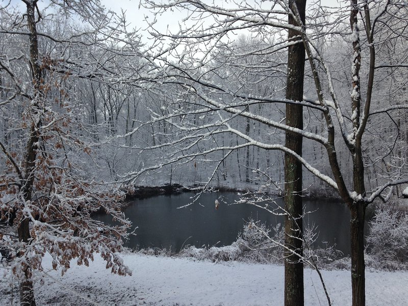 Invierno, nuestro estanque privado