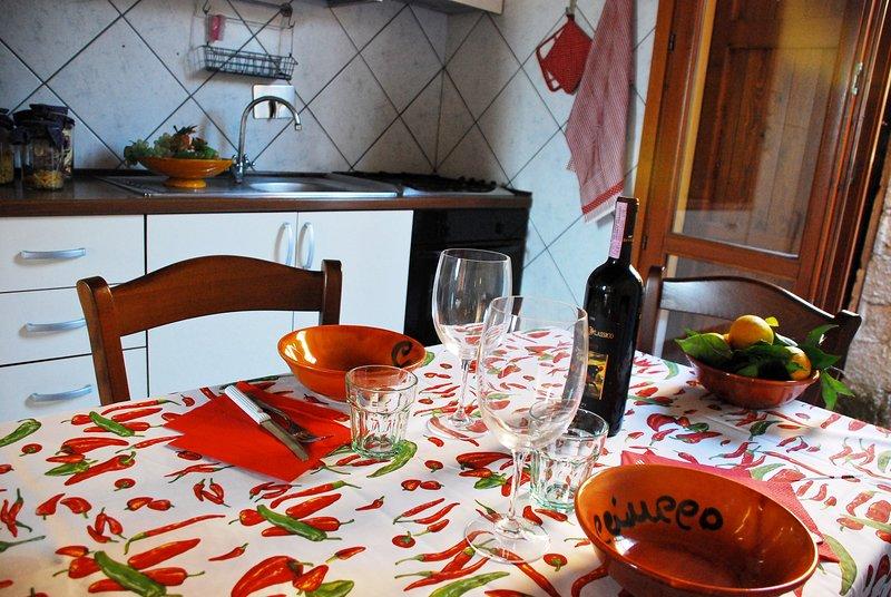 La Casina, holiday rental in Cascina