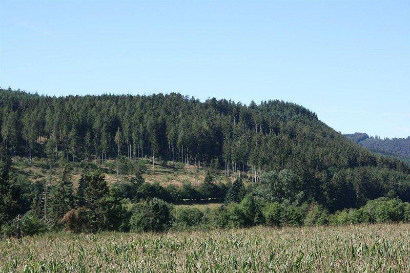 Nature avec des collines / montagnes, les champs, les forêts commence à la maison