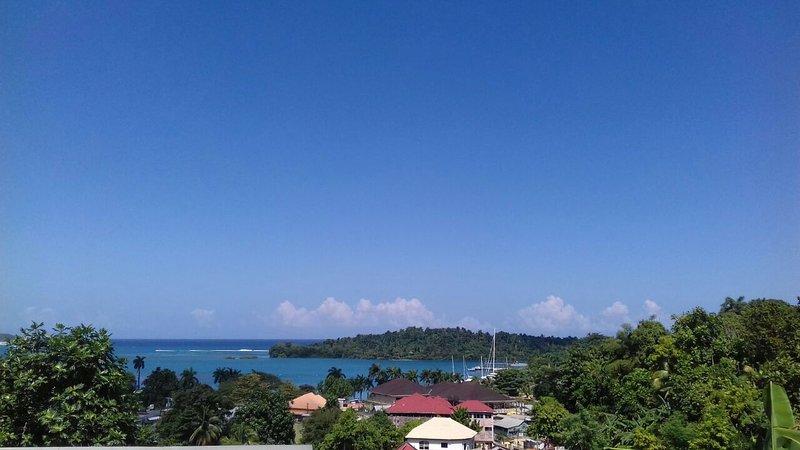 En vy över Navy Island