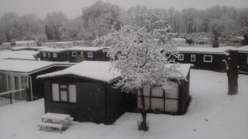 Winter Scene 2018..