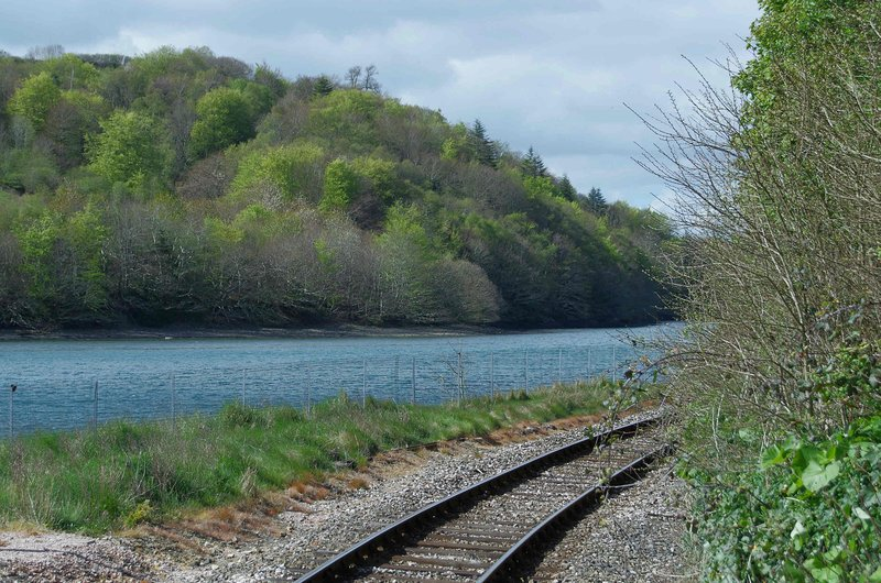 The railway track between East Looe and Liskeard.