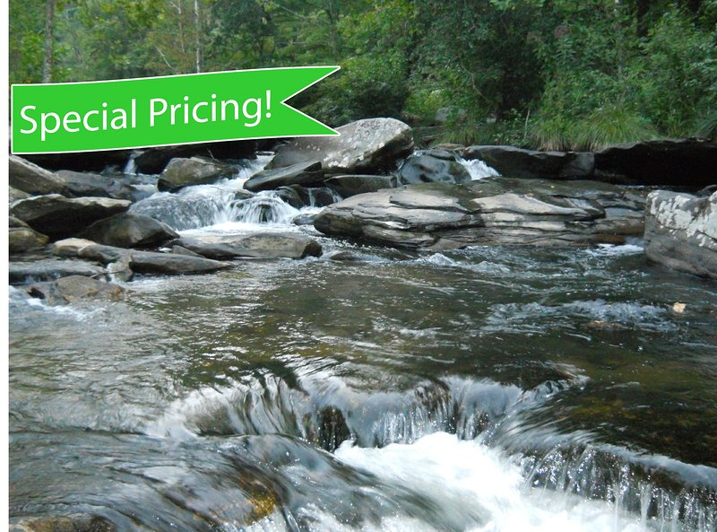 The Watauga River on the property in front of the house